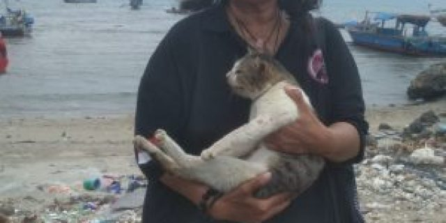 "Communitas Penyayang Kucing ""CRL"" Kuburkan Bangkai Kucing Akibat Pembantaian Massal"