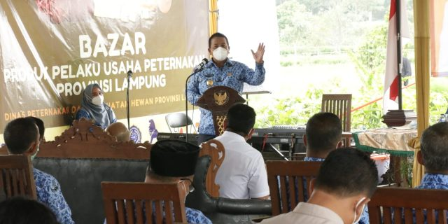 Gubernur Arinal Buka Rakor Pembangunan Peternakan & Kesehatan Hewan Di Provinsi Lampung
